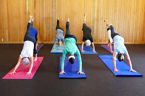 Group Classes with TracyGrayYoga